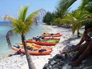 South Shore Beach and Snorkel