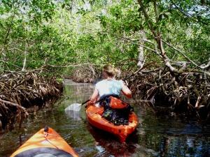 Mangrove Channel Utila