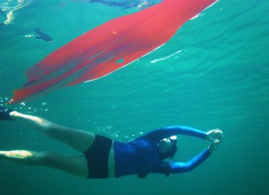 Kayak and snorkel Utila
