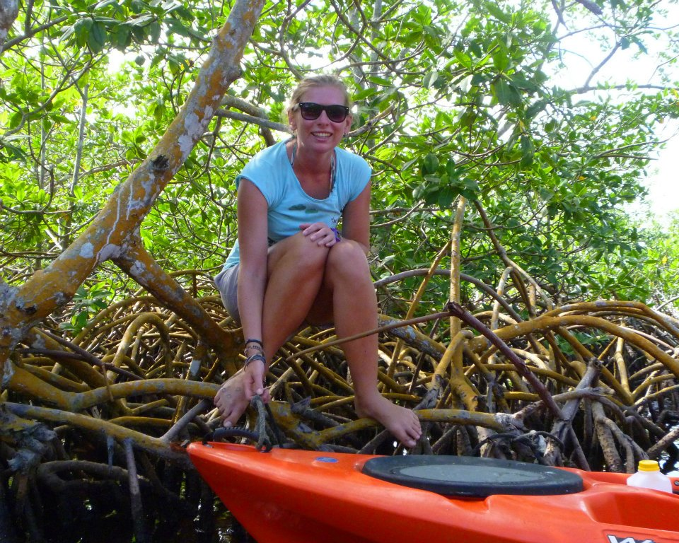 Exploring Utila's Mangroves with Kayak Utila